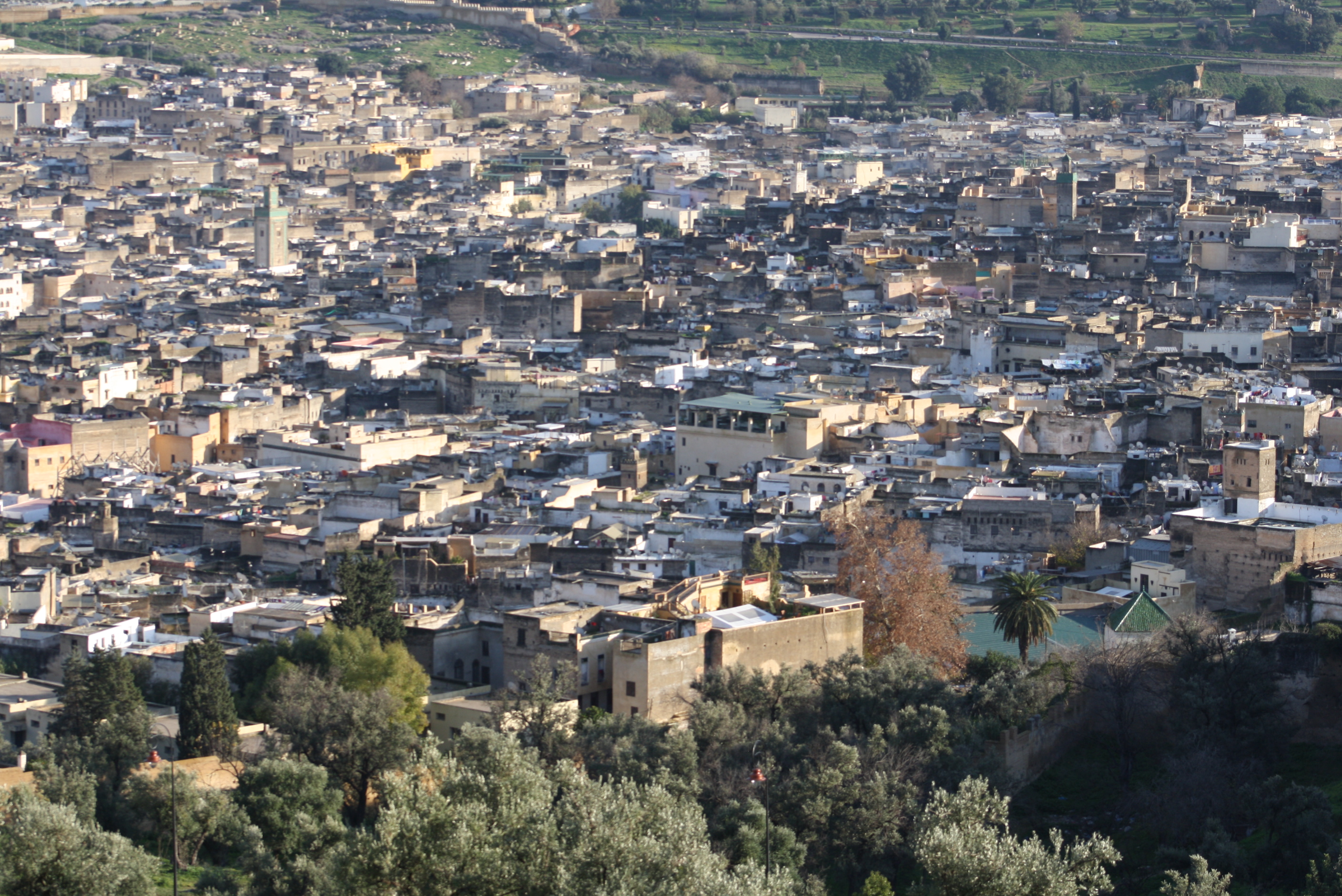 Fes - one of the old royal cities in Marocco